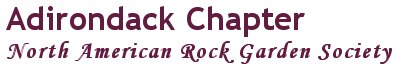 Adirondack Chapter, North American Rock Garden Society